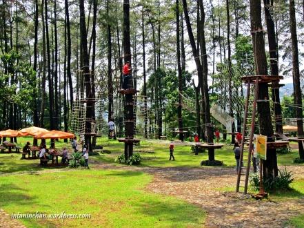 Suasana Tretes Treetop