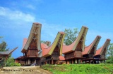Tana Toraja : Land of the Death (1)