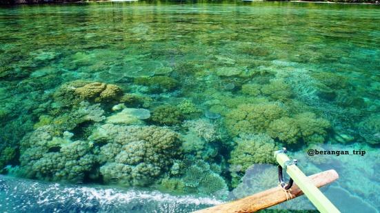 Karena dangkal dan airnya bening, koral mudah dilihat dari permukaan